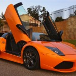 Orange Murcielago